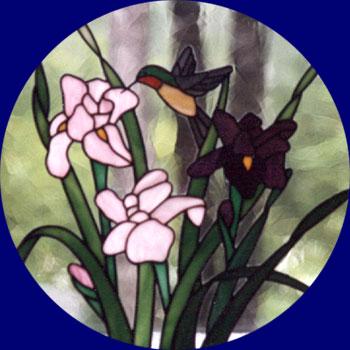 Iris with hummingbird